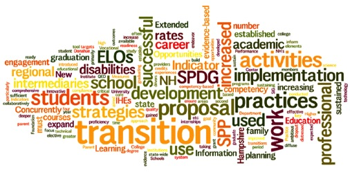 Image of all the words in the Next Steps NH grant proposal