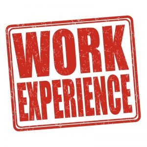 the words Work Experience